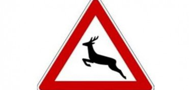 Verkehrszeichen Wild