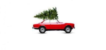 Bertelshofer Weihnachtsbaum