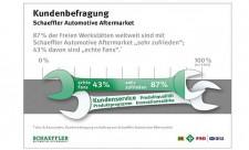 Gglobale Kundenbefragung - Schaeffler