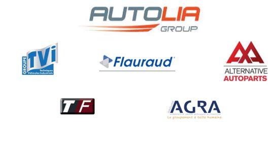 autolia group shareholder