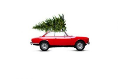bertelshofer-weihnachtsbaum.jpg