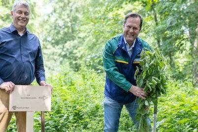 euromaster-umwelt-recycling-nachhaltigkeit-co2-emissionen-plantmytree.jpg