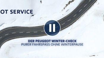 psa-groupe-peugeot-winter-check-inspektion.jpg